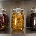 macerated oils at Crystal Hills Organics